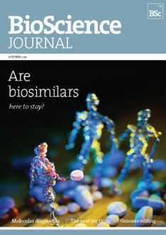 BSJ09-front-cover