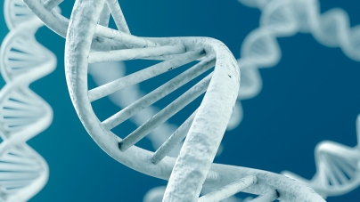 Biosimilars: should they have a 'similar' system to the originator?