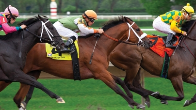 Research throws light on racehorse injuries