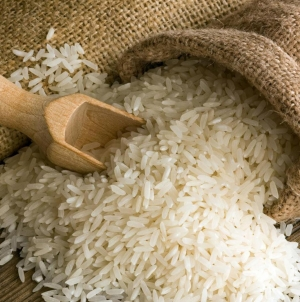 Scientific team develop new type of rice