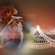 Hope as research unlocks the secrets of heart disease
