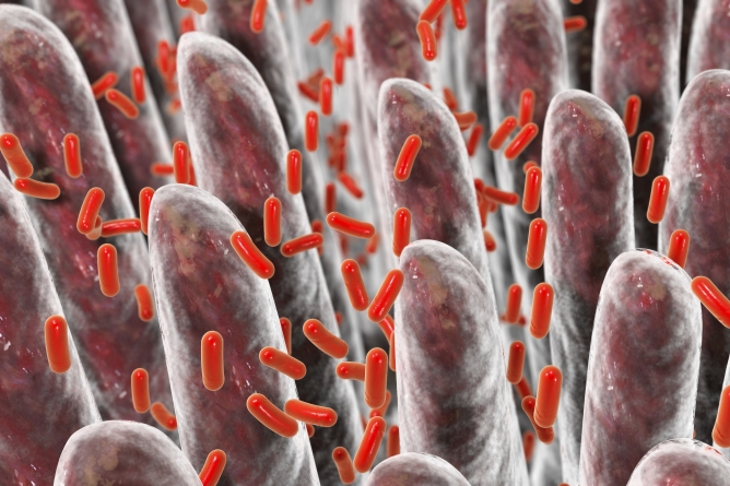 Toxin could help treat illnesses