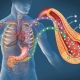 Impact of latest innovative gastroenterology research for patient benefit