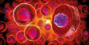Novel Microfluidic platform for Cancer Research