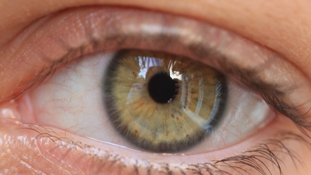 Changes in the eye connected to a decline in memory