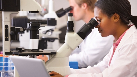 Using apprenticeships to build skills for innovation in life sciences