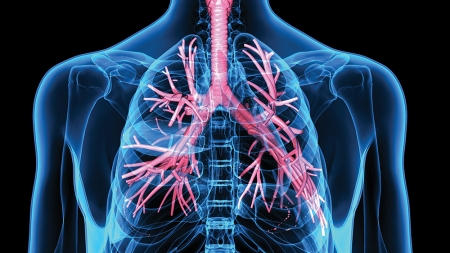 New treatments for severe asthma to be studied